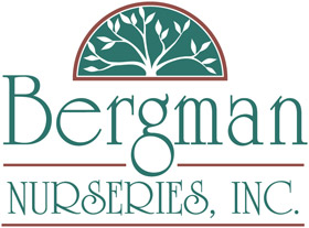 Bergman Nurseries